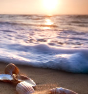 ocean sounds mp3 file helps you relax
